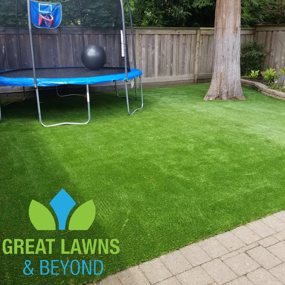 green, yard, garden, artificial, turf