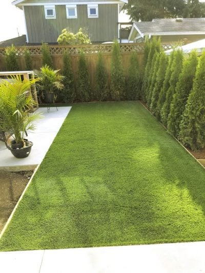 green, new, artificial, lawn, fresh, plants.