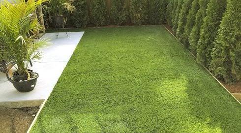 green, new, artificial, lawn, fresh, plants.