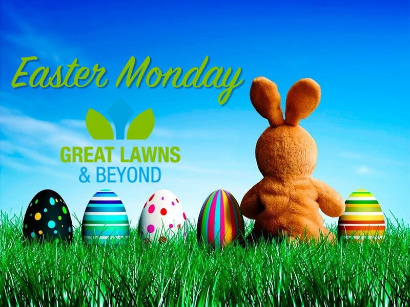 Easter Monday Great Lawns Beyond Bunny Colorfull eggs