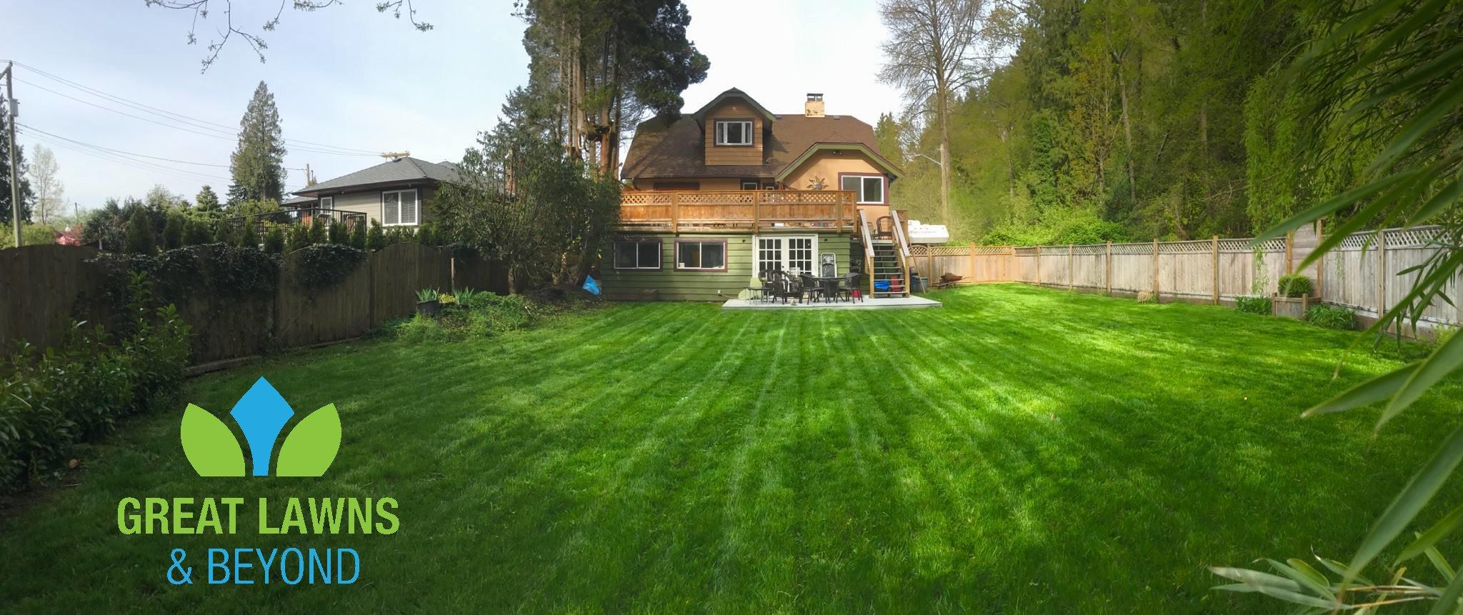 Great Lawns & Beyond