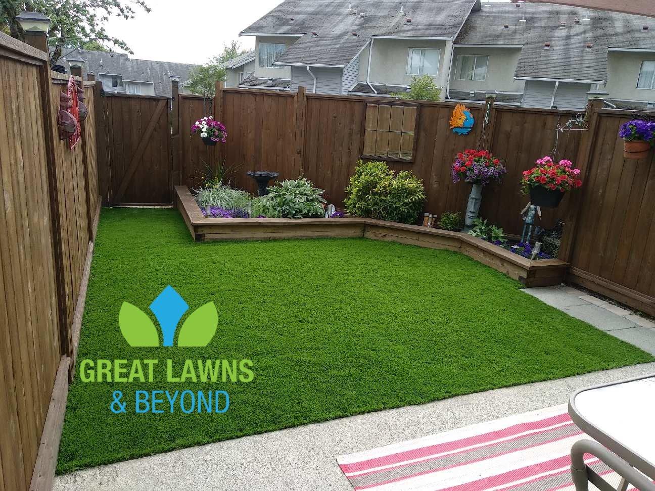 garden, back, yard, green, grass, artificial, sun