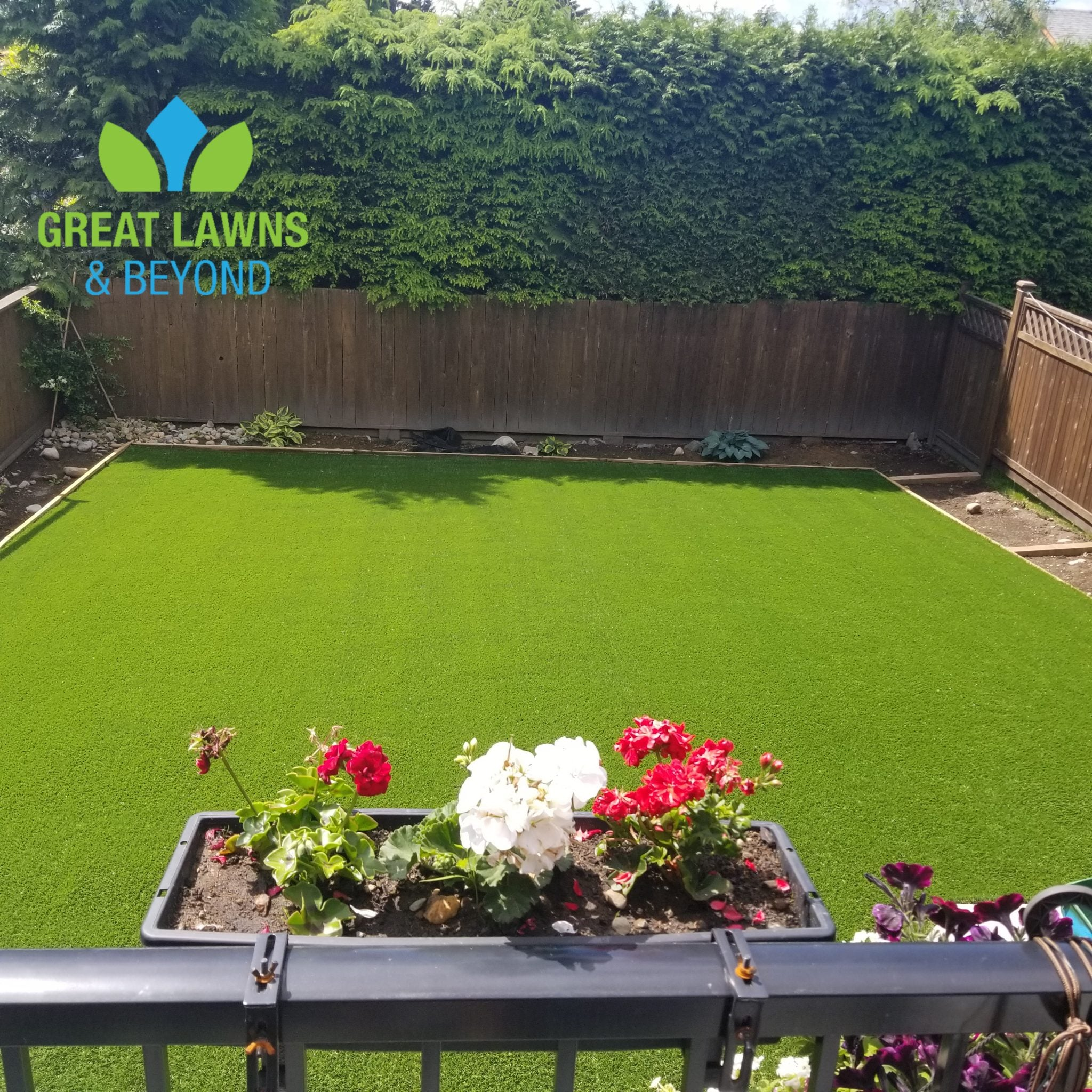 green, grass, artificial, sunny, garden, yard